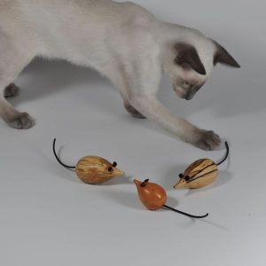 Siamese kitten with wooden mice